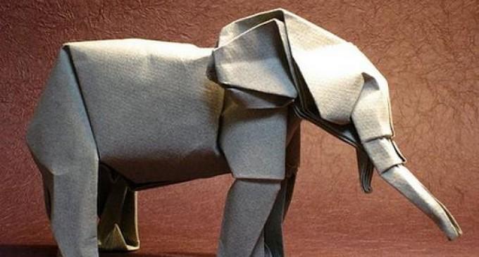 Origami ve Çokluktaki Teklik