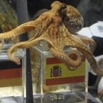 Ahtapotlar uzay yaratıkları mı?