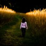 Yol, Adımlar ve Manzara