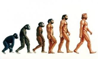 İnsanın Evrimi