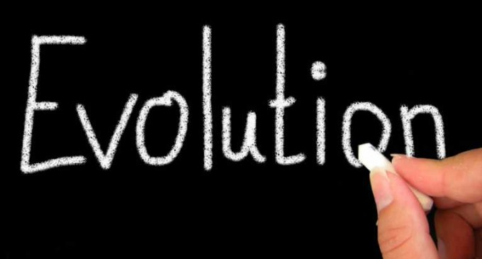 Organik evrim mi kültürel evrim mi?