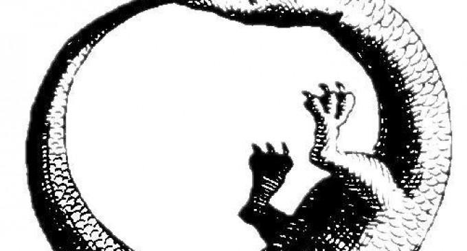 9: Evrensel Bir Sembol
