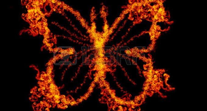 Ruhsal Gelişimin Metamorfozu