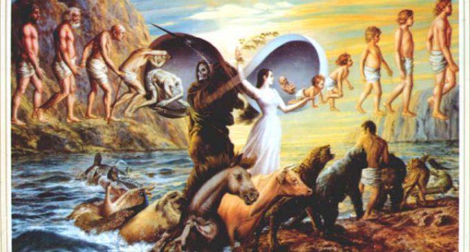 Doğum, Ölüm, Hiçlik veya Her Şey.