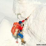 Kar Leoparı'nın Öyküsü – 1994