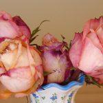 Vazodaki Çiçek