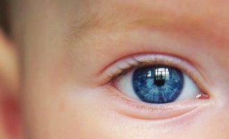 Çocukların gözünden