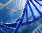 DNA NEDİR NE DEĞİLDİR?