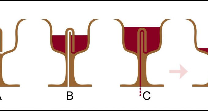 Pisagor Bardağı'nın Sırrı