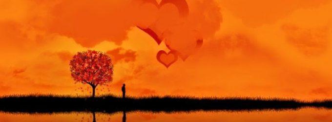 Sevgi Neredeyse Tanrı Orada Olacak!