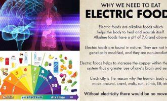 Elektrikli Yiyecekler
