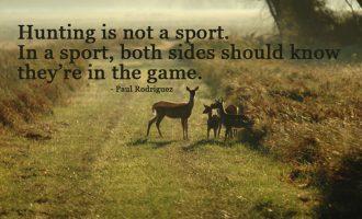 Avcılık Meselesi