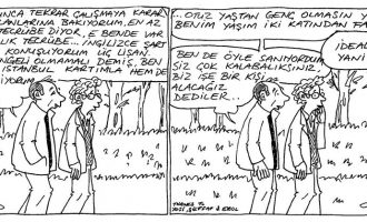 İdeal Aday