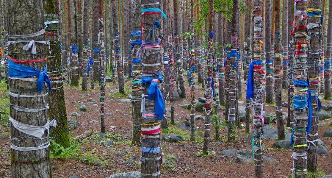 Şamanizm ve Çalama bağlama geleneği